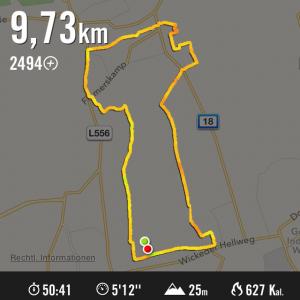 Streckengrafik aus der Nike+ App, AWO Lauf Asseln 2015