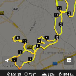 Screenshot von der Nike+ App über meinen 15,5k Lauf