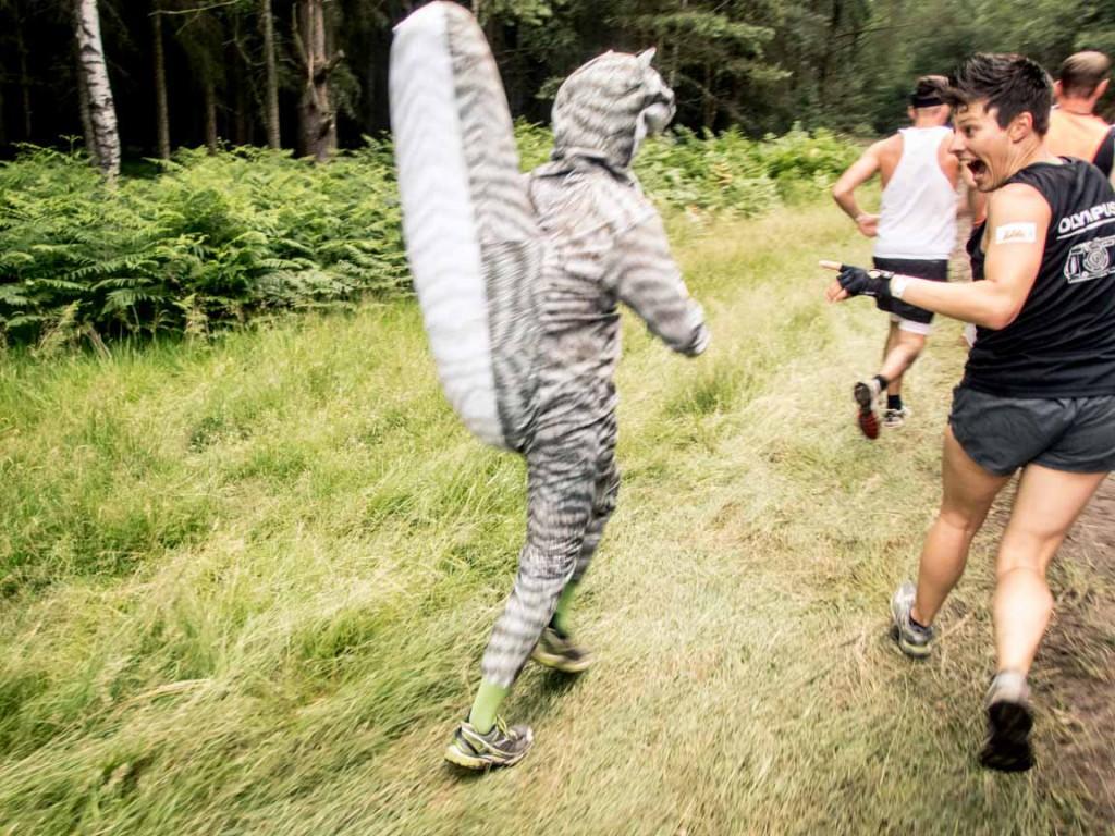 Läufer im grauen Eichhörnchenkostüm
